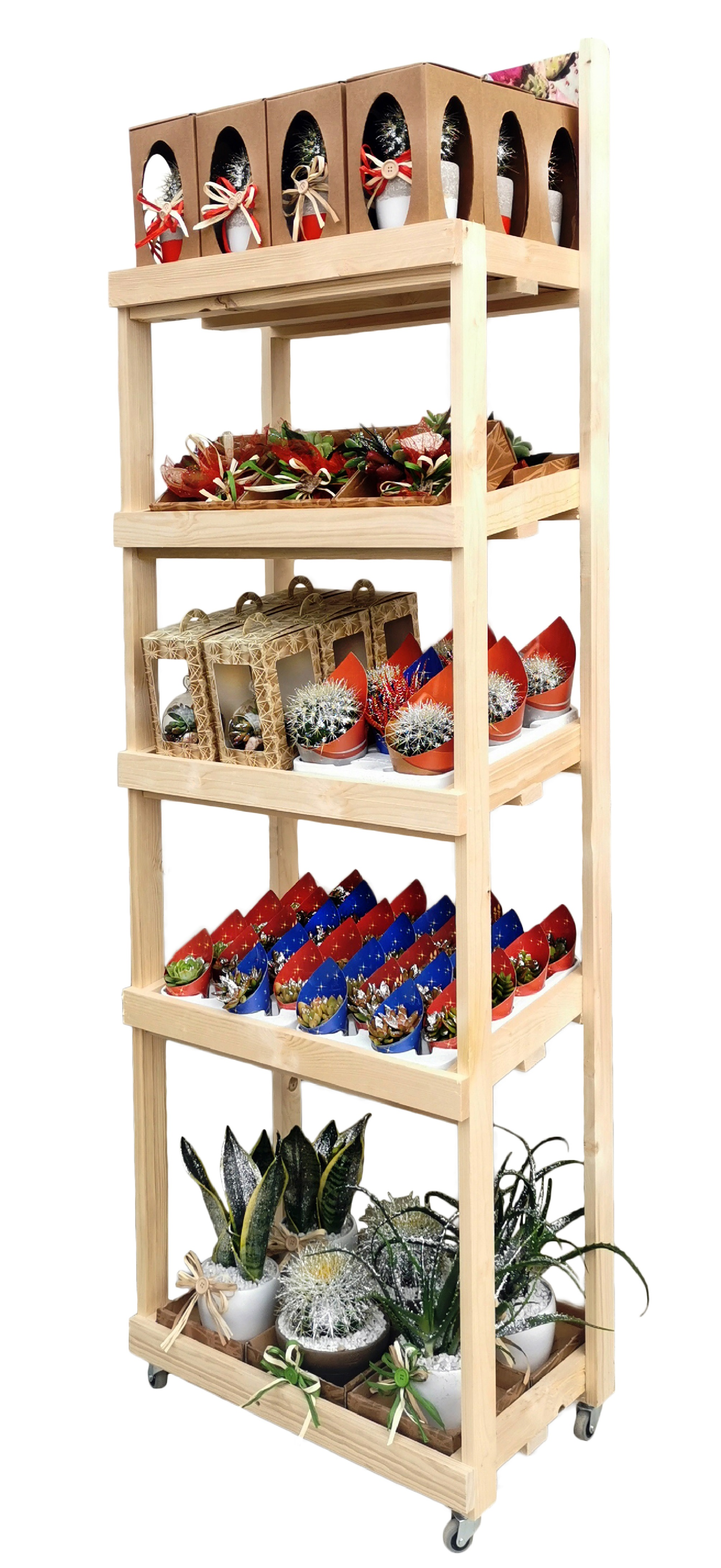 WOODEN EXHIBITOR WITH WHEELS GDO -MIX SUCCULENTS & CACTUS GLITTERS- 60 X 40 X H 170 5 SHELVES | Giromagi